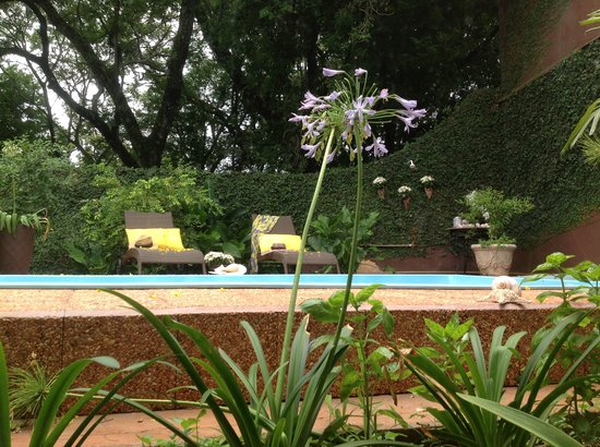 Marica B&B: Garden & pool área