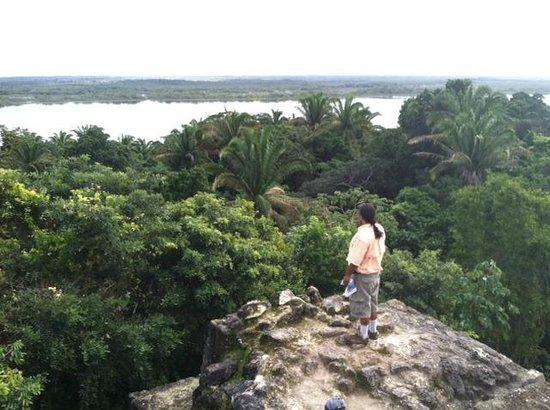 La Perla Del Caribe : Lamanai, view from the top of the temple