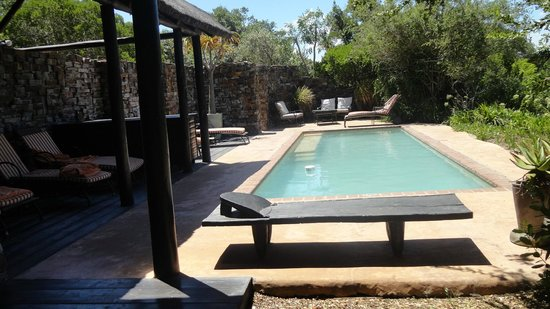 Kariega Game Reserve - River Lodge : Poolen vid lodgen