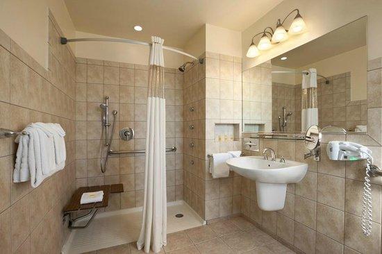 Days Inn Chicago: ADA Bathroom