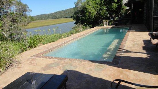 Kariega River Lodge: Poolen vid lodgen