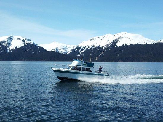 Alaskan Summertime Charters