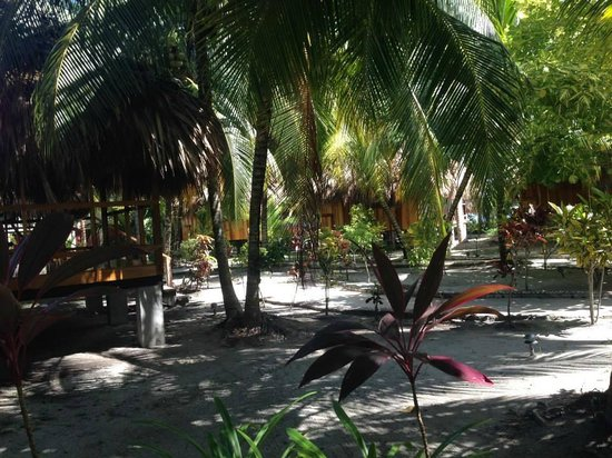 St. George's Caye Resort : Hotel grounds