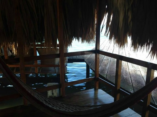 St. George's Caye Resort : Hammock on our patio
