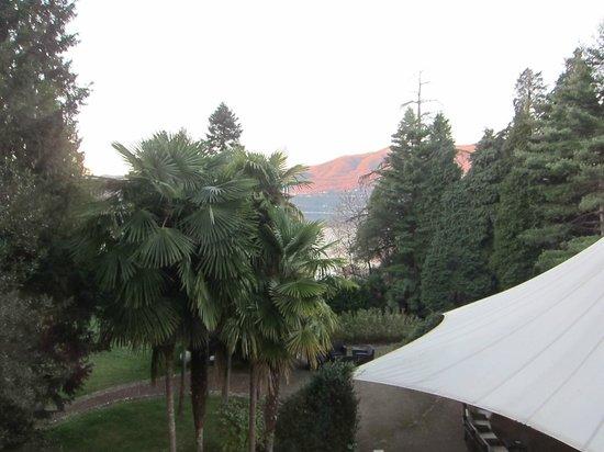 Villa Crespi : Вид на озеро
