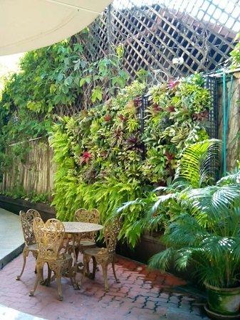 Eurana Boutique Hotel: Garden