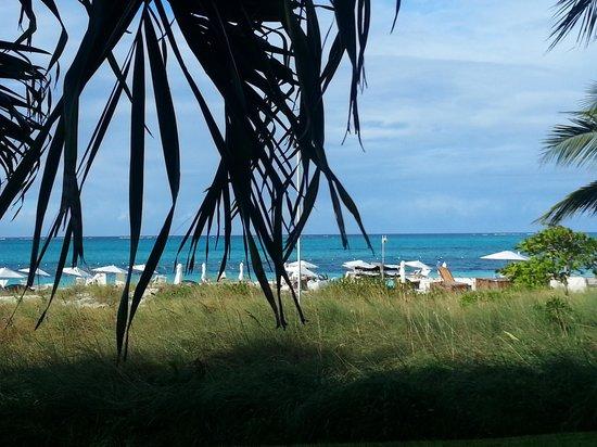 Gansevoort Turks + Caicos: Great view