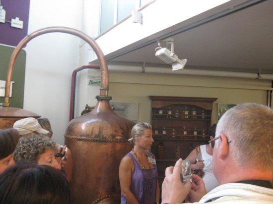 Parfumerie Galimard : 2