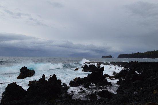 Valley Isle Excursions: Ocean near Hana