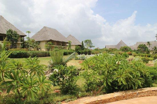 Dream of Zanzibar : the hotel bungalows