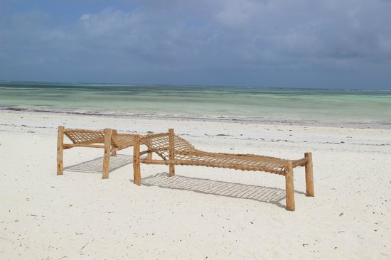 "Dream of Zanzibar : beach without ""beachboys"""