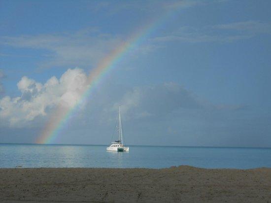 Jolly Beach Resort & Spa: View from beach