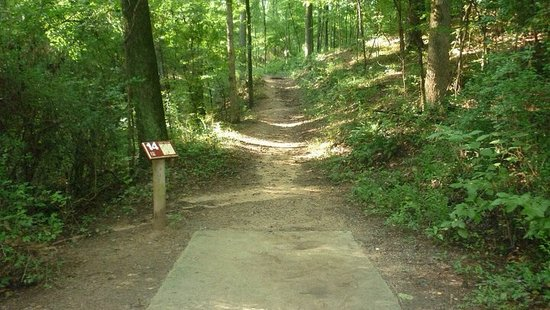 Bower's Park Disc Golf Course