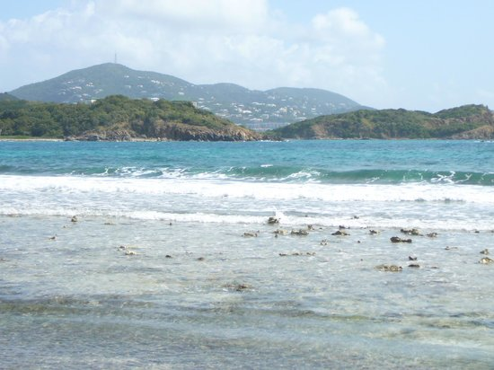 Virgin Islands Campground : Limestone Beach
