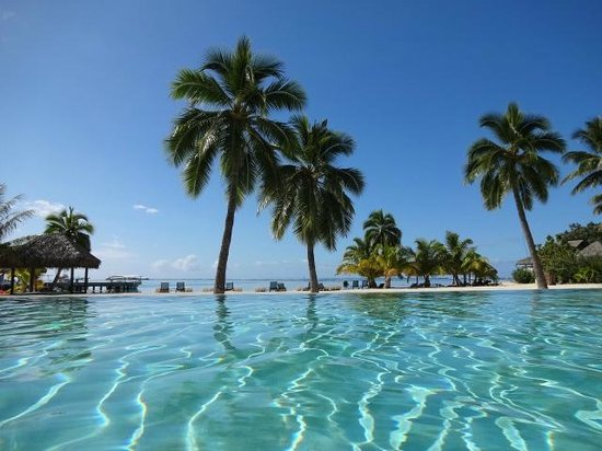 InterContinental Moorea Resort & Spa: View from the infinity pool