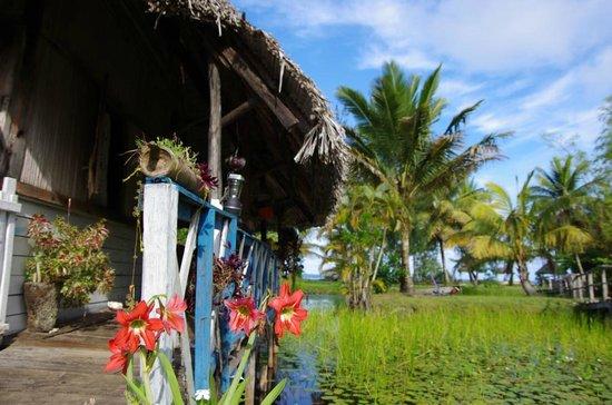Hotel Le Lagon: Décor luxuriant à 2 pas de la plage