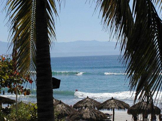 Grand Palladium Vallarta Resort & Spa: The Surf