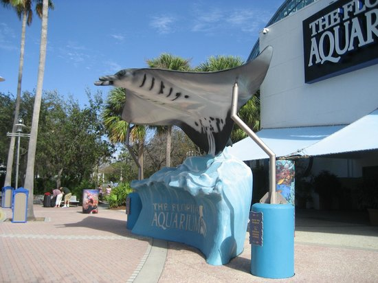 The Florida Aquarium : Florida Aquarium