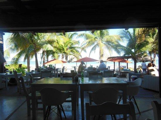 Mandarina Restaurant & Beach club by Casa Las Tortugas: vista
