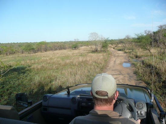 Cheetah Plains : justin notre ranger