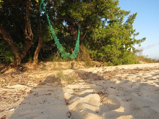 Abe's Snorkeling and BioBay Tours: Private beach