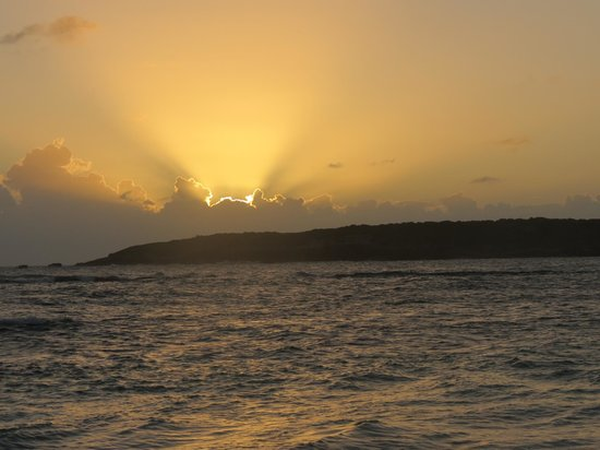 Abe's Snorkeling and BioBay Tours: Beautiful sunset!