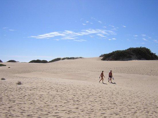 H10 Tindaya : Dune di Corallejo