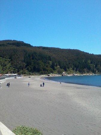 Hualpen : Praia de Lenga