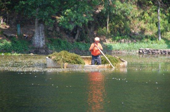 Selva Negra Mountain Resort: The Lake