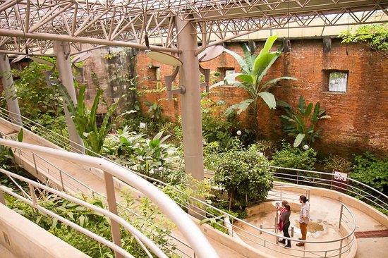 Musée national (Museo Nacional) : Vlindertuin