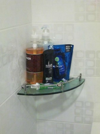 Girls Generation Hostel: Shampoo and shower gel