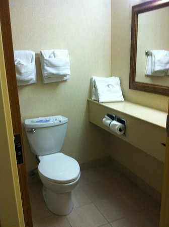 Wisp Resort Hotel and Conference Center: bathroom