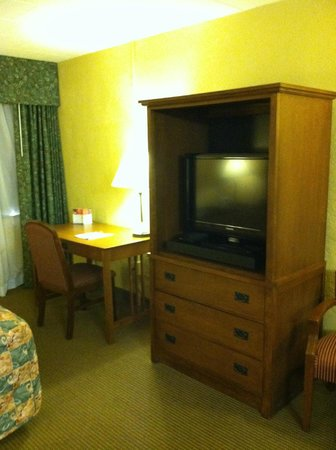Wisp Resort Hotel and Conference Center: T.V.