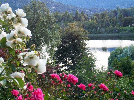 Bellevue Bed & Breakfast: Jardines