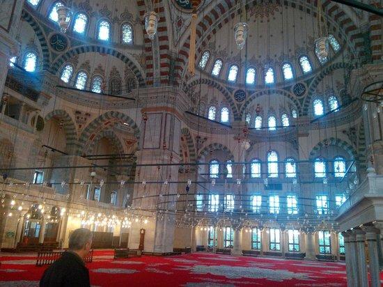Historic Areas of Istanbul : İstanbul fatih Camii Yarım Kubbeler 01.01.2014