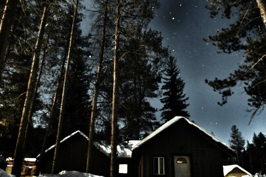 Daven Haven Lodge & Cabins: Daven Haven Cottages under the stars