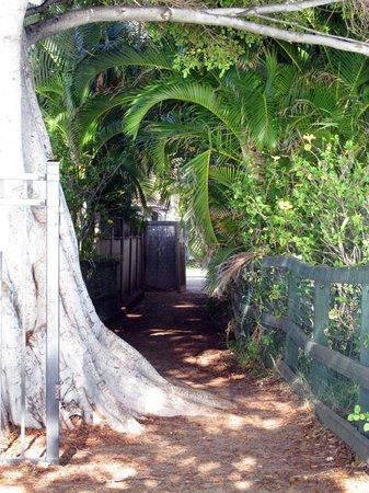 The Tiki Beach Hostel : Path to the Beach