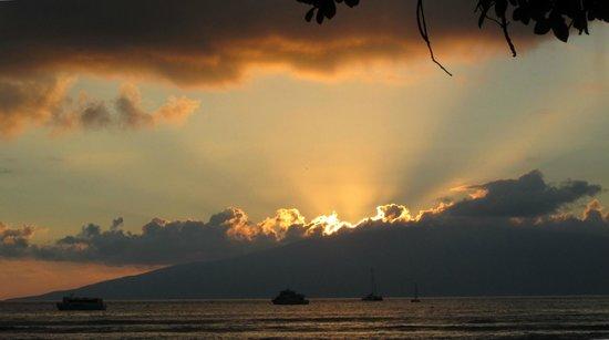 The Tiki Beach Hostel : Sunset over Lanai from the beach