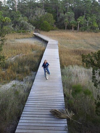 Skidaway Island State Park: Up Close With the Marsh.  There's an observation tower and picnic table at the end.
