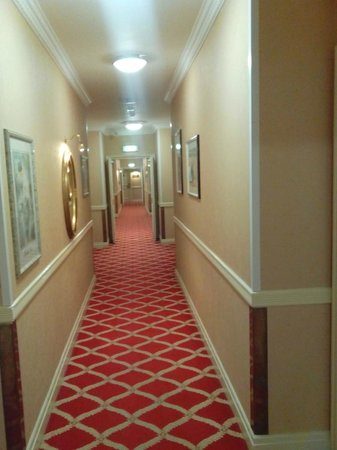 Britannia Country House Hotel & Spa : Oldie world corridor