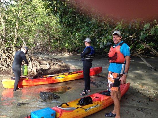 Paddletrek Kayak Adventures: Exploring the beach