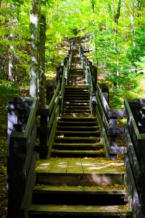 Copper Falls State Park: Stairs to an overview