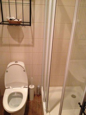 Pushka Inn Hotel : Box do chuveiro - quase impossível usar