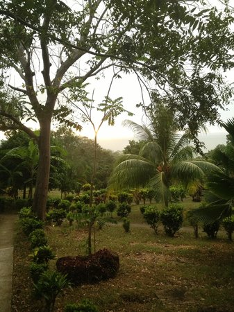La Omaja Hotel and Restaurant: View from front porch of cabin