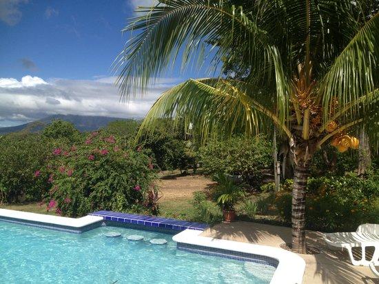 La Omaja Hotel and Restaurant: Pool