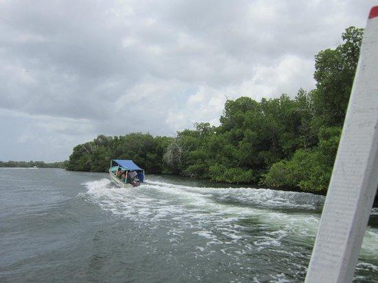 Laguna de la Restinga: Laguna La Restinga