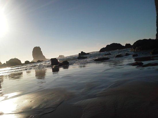RV Resort at Cannon Beach: Low tide
