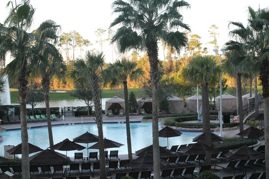 Hilton Orlando Bonnet Creek: Pool
