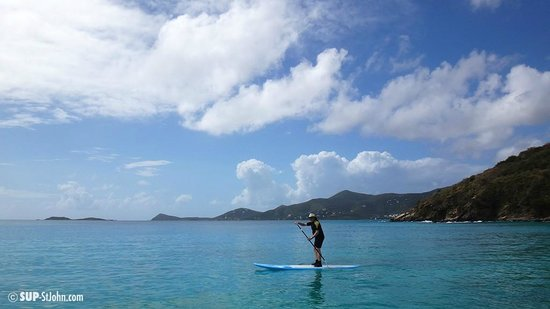 SUP St. John - Learn to Paddleboard in the USVI: Lucy made this easily happen