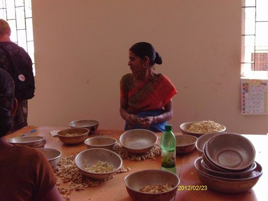 Day Tripper Tours & Travel - Day Tours: Cashew grading at the Cashew factory